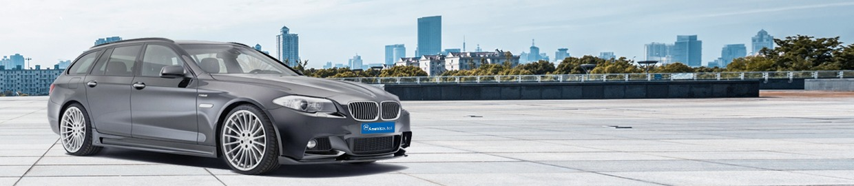 Guide d'achat BMW Série 5 Touring